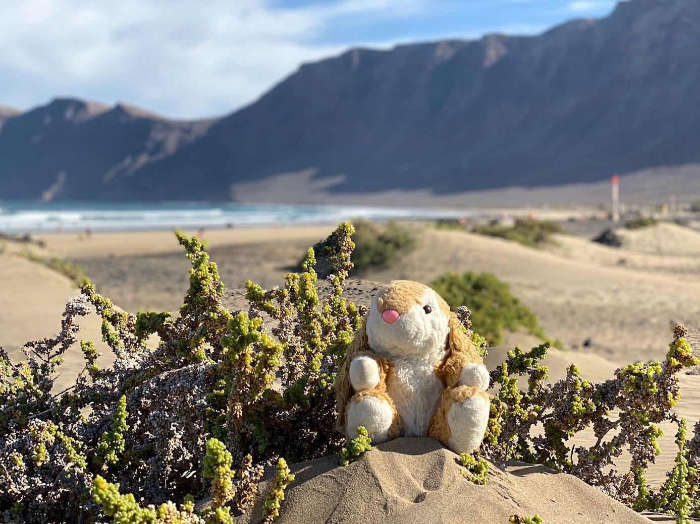 Exploring Lanzarote's beaches