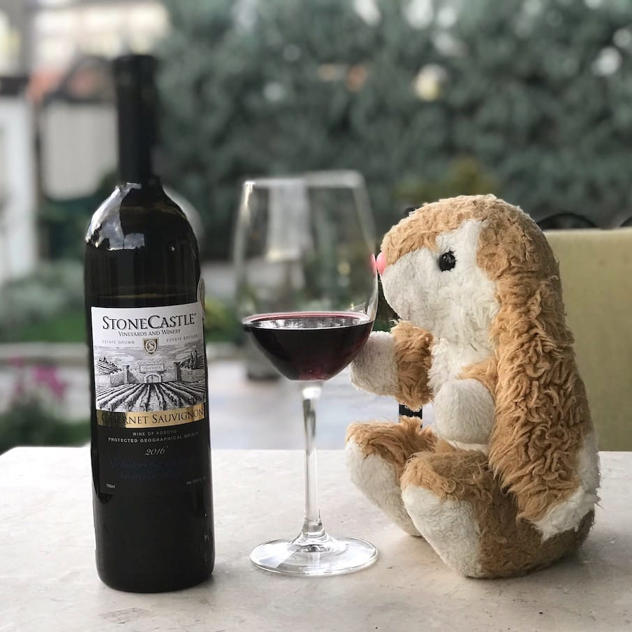 Bunny wine-tasting