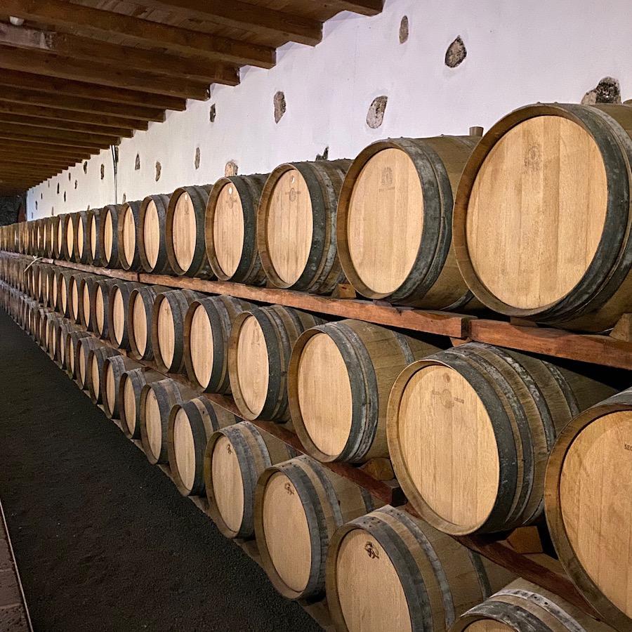 Impressive wine cellar