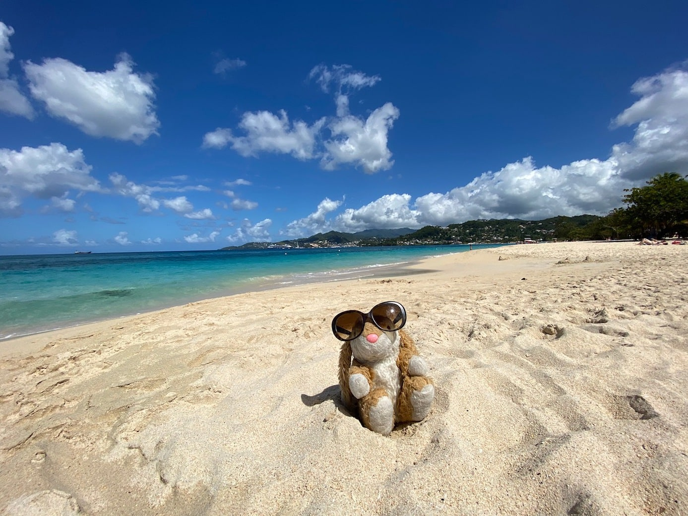 Grenada's most famous beach