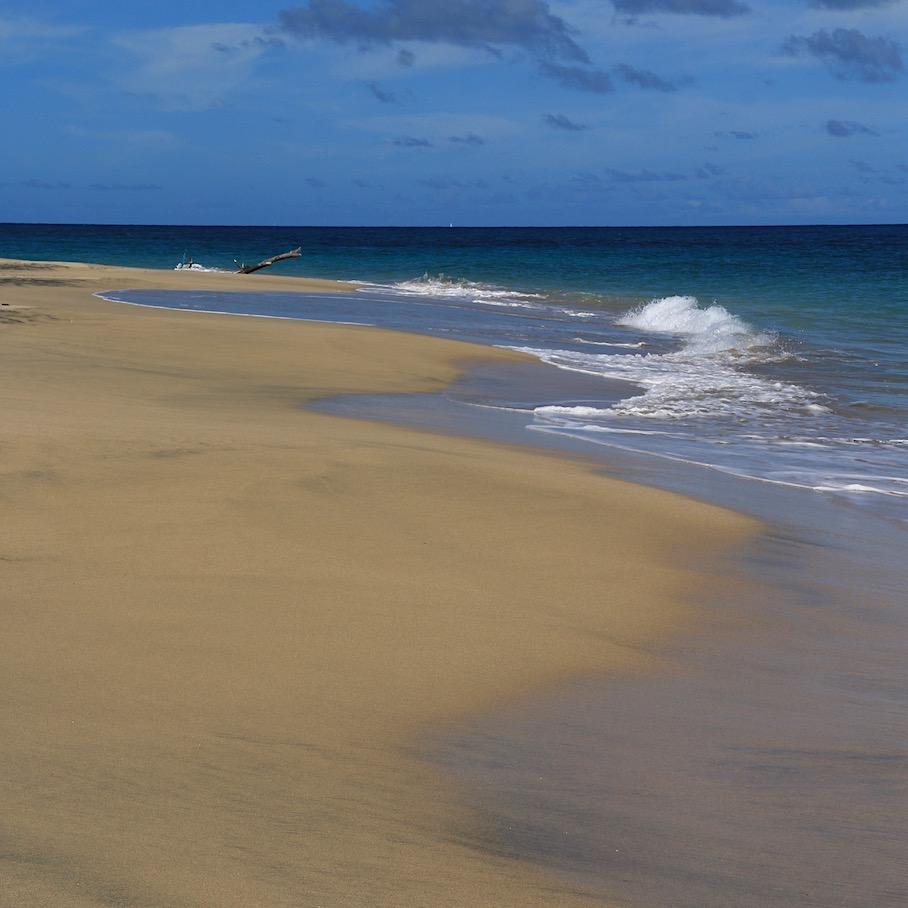 Wild Levera Beach
