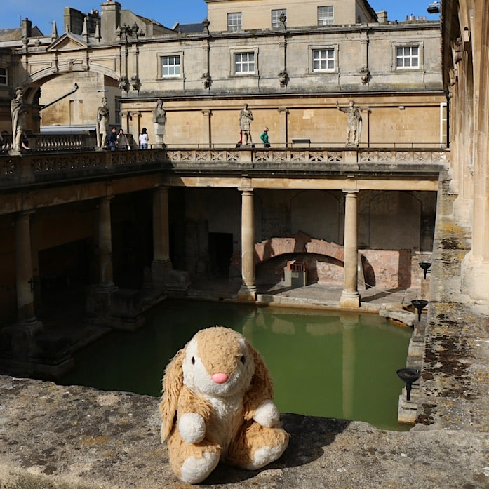 Bunny at Roman Baths