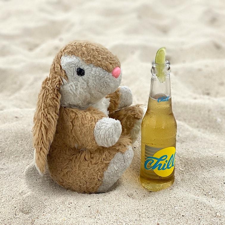 Bunny on Eagle Beach