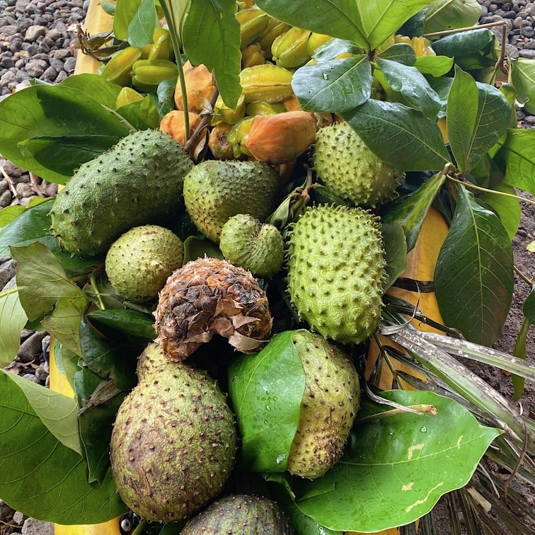 Soursop and other goodies