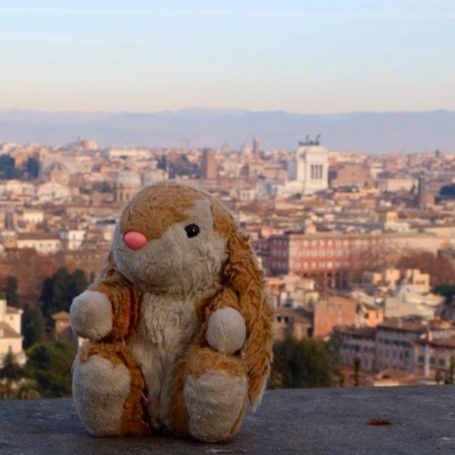 Bunny loves Rome