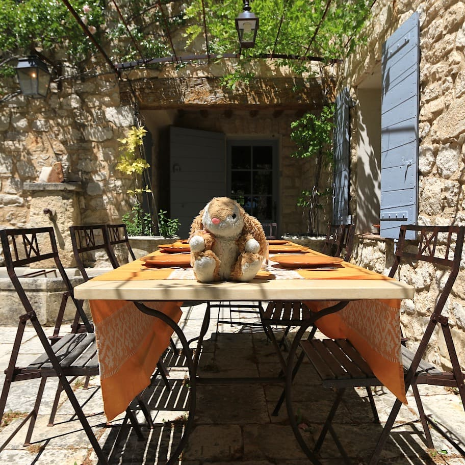 Bunny holidaying in Provence