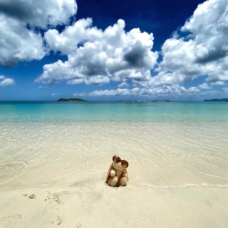 Carriacou's most famous beach
