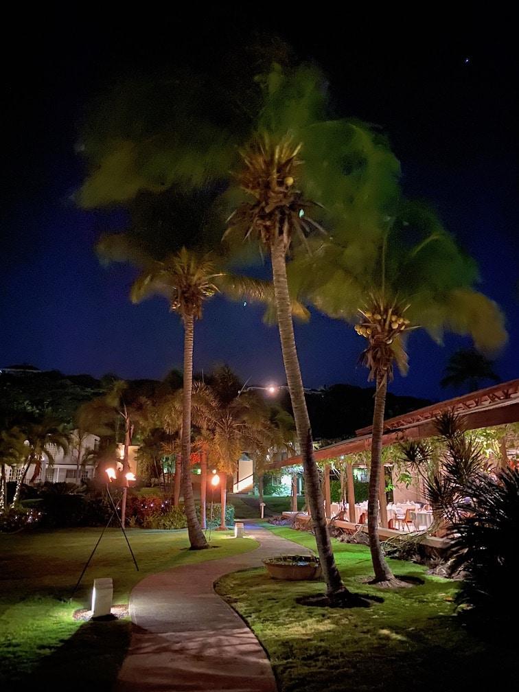 Calabash at night